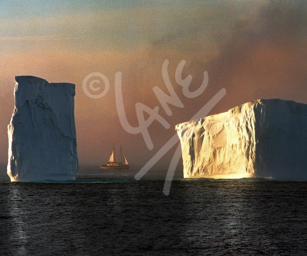 Cape Spear, iceberg at sunset