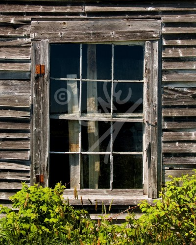 Jackson's Cove window