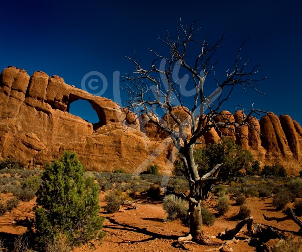 UTAH The Arches National Park
