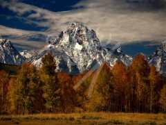 WYOMING Mount Moran