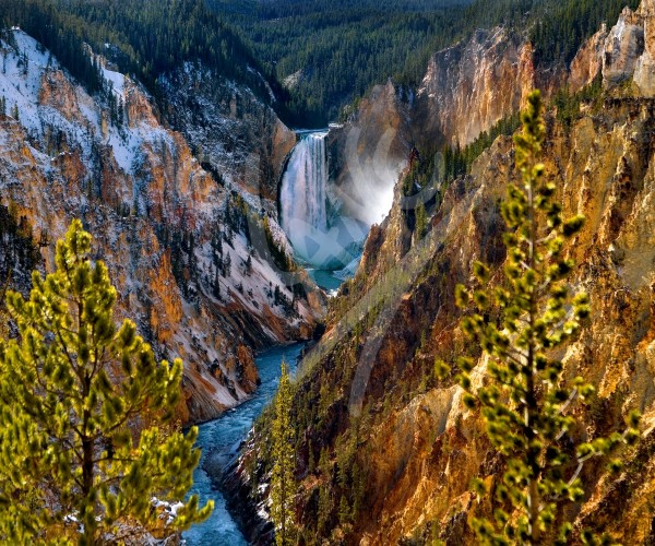 WYOMING Yellowstone Park