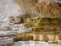 WYOMING Mammoth Hot Springs