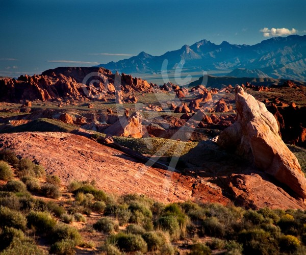 NEVADA Valley of Fire