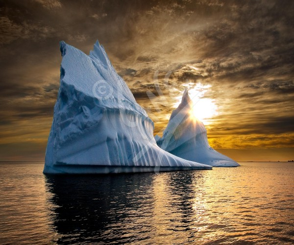 Twillingate, golden sunset iceberg