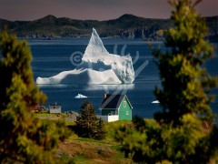 Back Harbour, iceberg & green house
