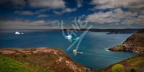 Cape Spear, Fort Amherst, icebergs