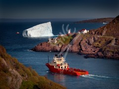 St. John's, iceberg outside the Narrows