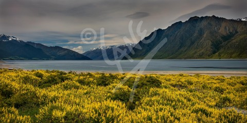 NEW ZEALAND Lake Hawea