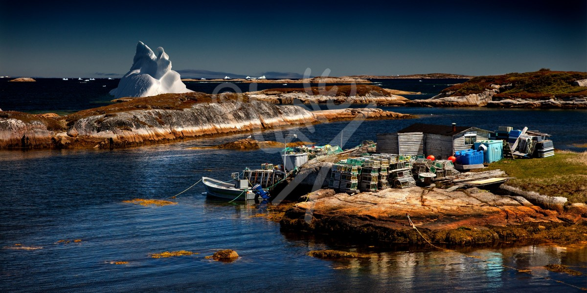 Wesleyville fishing stage and iceberg