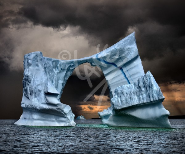Wild Bight iceberg north