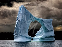 Wild Bight iceberg east
