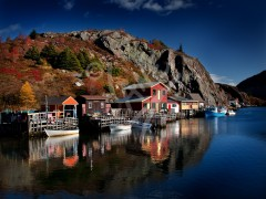 Quidi Vidi Autumn Morning