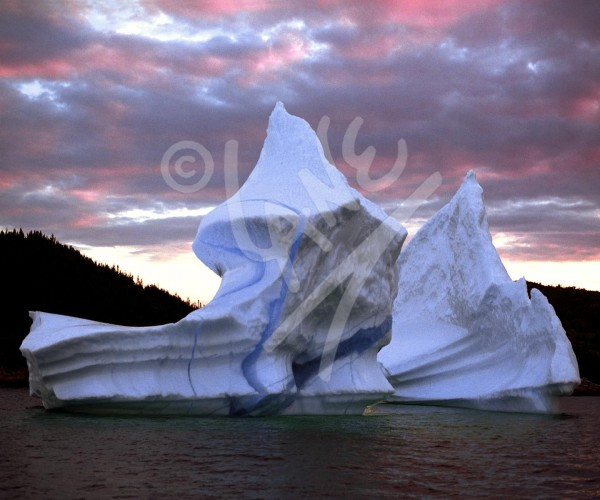 Herring Neck, iceberg at dusk