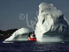 Twillingate, iceberg and coast guard ship