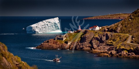 St. John's Narrows, Fort Amherst & Cape Spear